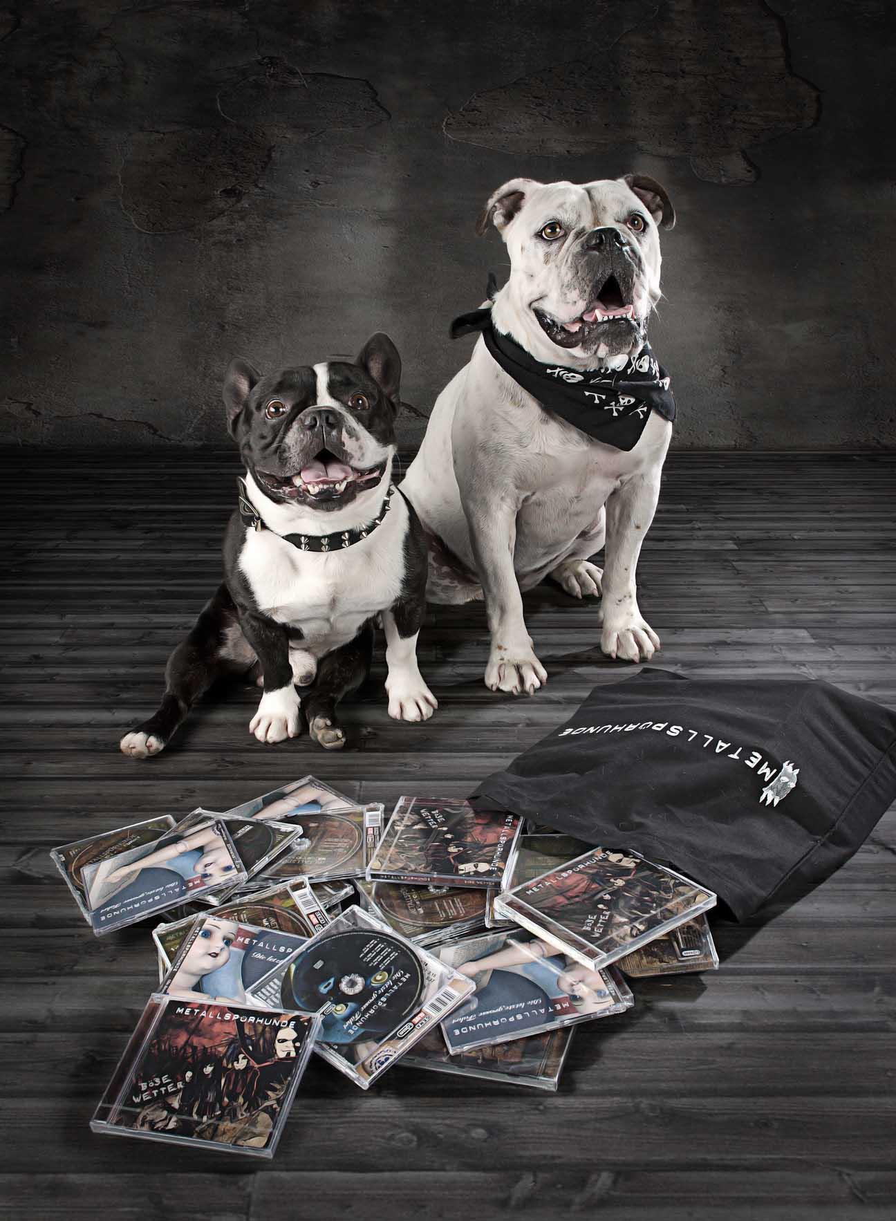 Metallspürhunde