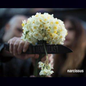 Demoncast – Narcissus